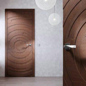 Modern door d15