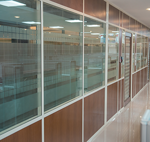 partition P3 glass & wood