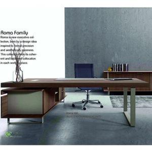 Roma office family